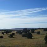 Sur la route de Flagstaff